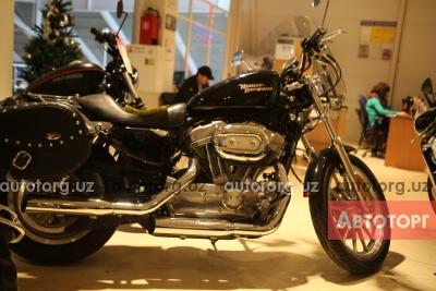 мотоцикл Harley-Davidson xl1200 sportster low 2009 года в Ташкент