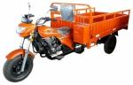 Трицикл WANHOO WH200ZH-5B2014 года за 15 500 000 $ на Автоторге