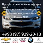 Профессиональные автоуслуги (Ремонт двигателей...